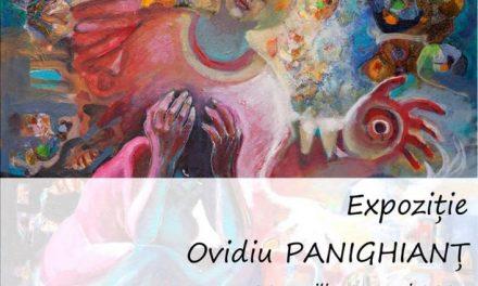 Expoziție Ovidiu Panighianț @ Muzeul de Artă Cluj-Napoca