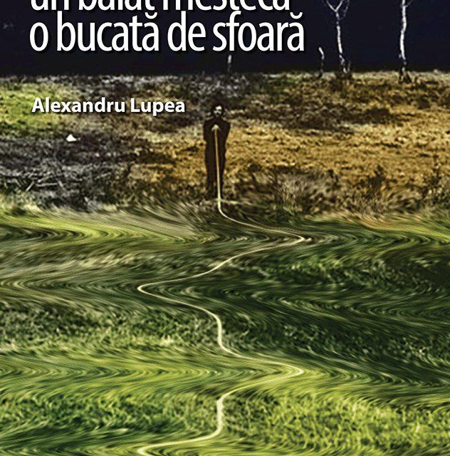"""Expo Maraton 2017, #6: Stanciu Eliza, """"Shades"""" / Lupea Alexandru, """"Un băiat mestecă o bucată de sfoară"""" @ Galeria Casa Matei, Cluj-Napoca"""