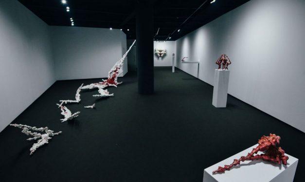 The Blind Spot- un solo show de Bianca Mann @ Mobius Gallery, București