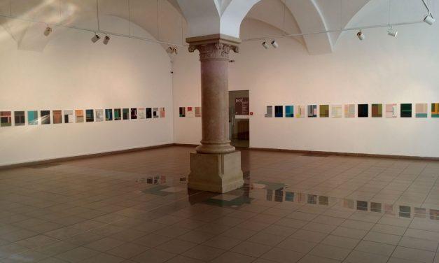 """Dana Constantin și Marcel Bunea """"DOI 5"""" @ Muzeul de Artă Contemporană Brukenthal"""