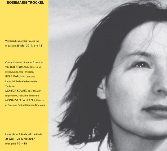 Rosemarie Trockel – expoziție de artă contemporană @ Muzeul de Artă Timișoara