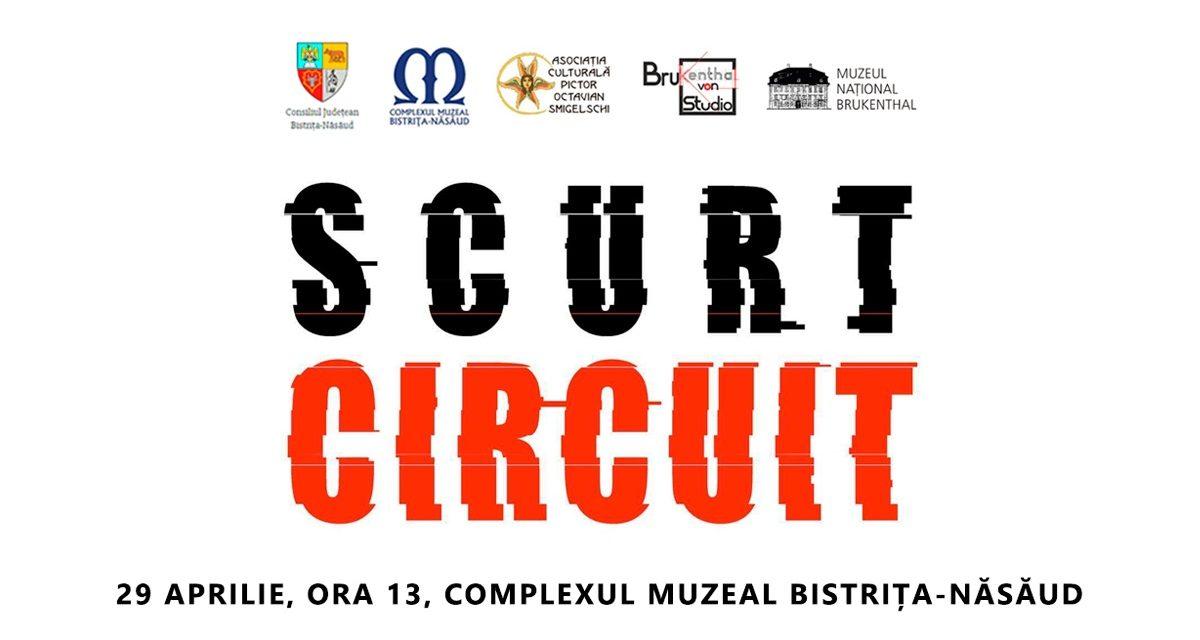 """""""Scurt circuit"""", expoziție de artă contemporană @ Complexul Muzeal Bistrița-Năsăud"""