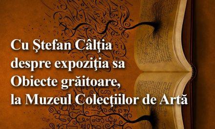 Ştefan Câlţia la Cafeneaua critică @  Muzeul Colecţiilor de Artă