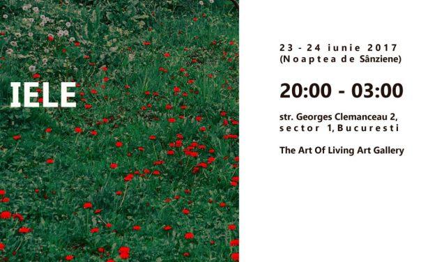 """Ioana Niculescu-Aron """"IELE, expoziție în Noaptea de Sânziene"""" @ The Art of Living Gallery, București"""
