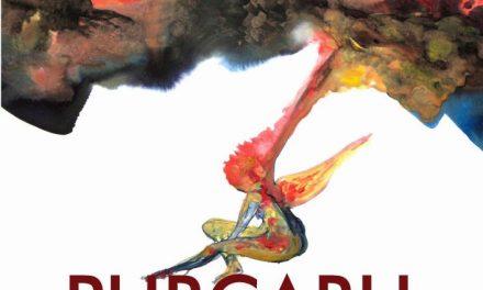 Transfigurare – solo show Sorin Purcaru @ Nürnberg