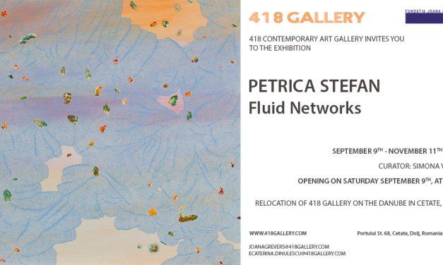 """Petrică Ştefan """"Fluid Networks"""" @ 418 GALLERY"""