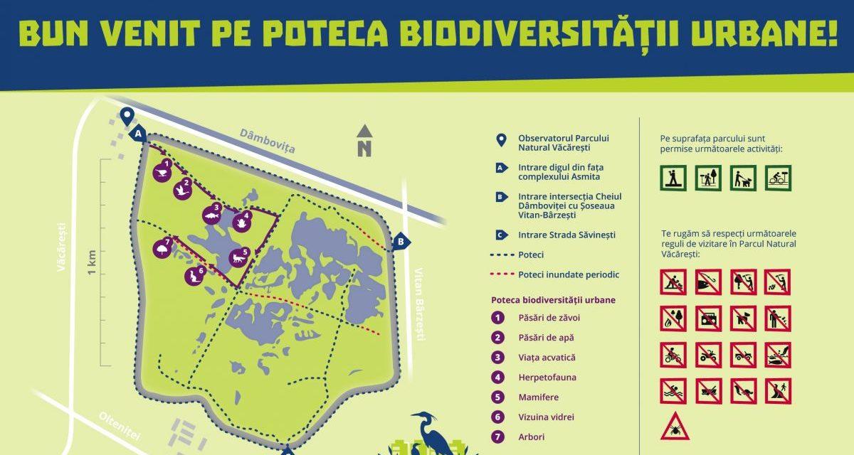 """Parcul Natural Văcărești este pregatit să-și primească vizitatorii pe """"Poteca biodiversității urbane"""""""