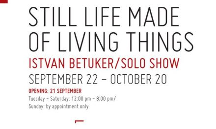 Istvan Betuker. Still life with living things @ Galeria Sector 1, București