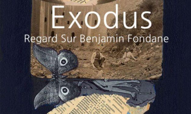 """Expoziţia """"Exodus. Benjamin Fondane – Perspective"""" de Anca Seel-Constantin se deschide la Galeria ICR Paris"""