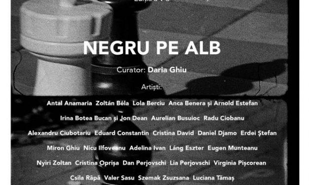 Bienala Alb negru, ediția a V-a @ Muzeul de Artă din Satu Mare