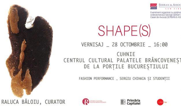 Dragoş Neagoe – Shape(s)