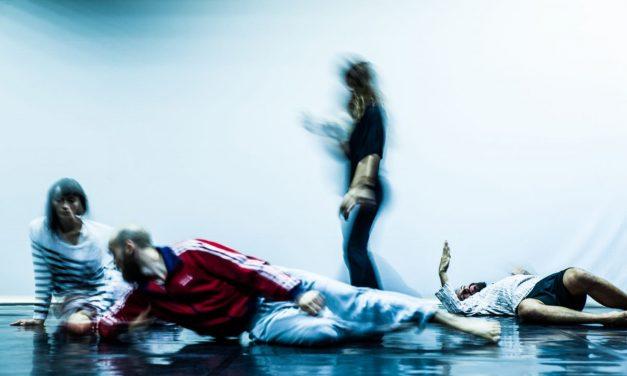 Moving Fields, un spectacol Petec,în colaborare cu Centrul Național al Dansului București (CNDB)