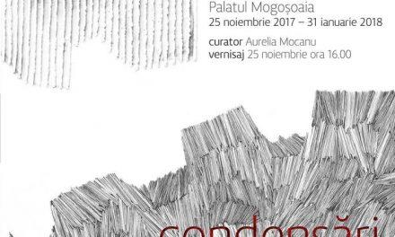 """Florica Prevenda """"Condensări"""" @ Centrul Cultural """"Palatele Brâncovenești de la Mogoșoaia"""""""