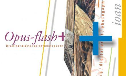 """Ioan Cuciurca """"Opus-Flash +"""" @ Muzeul de Artă din Cluj-Napoca"""