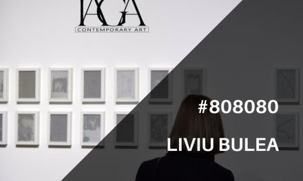 "Liviu Bulea ""#808080"" @ GaleriaIAGA Contemporary Art, Cluj-Napoca"