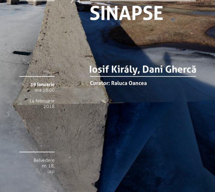 D Platform: Sinapse @ Borderline Art Space, Iași