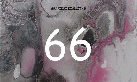 """Expoziție de grafică. Horváth Gyöngyvér """"66"""" @ Muzeul de Artă Cluj-Napoca"""