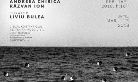 "Andreea Chiricā și Rāzvan Ion ""Gradual Decline"" @ Galeria Visual Kontakt, Cluj"