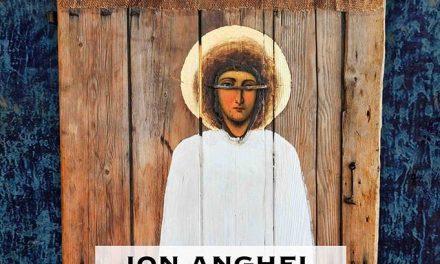 """Ion Anghel, expoziție personală """"Cronica Domestică"""" @ Muzeul de Artă Cluj-Napoca"""