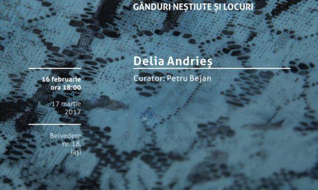 """Expoziție de pictură, Delia Andrieș """"Respiră acest aer"""" (Breathe This Air) @ Borderline Art Space, Iași"""