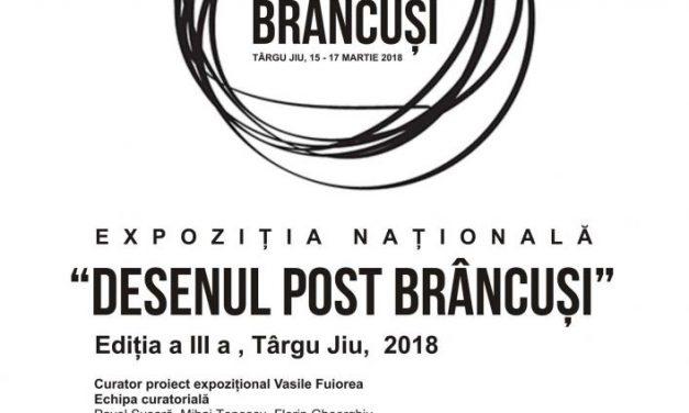 """Expoziția Națională de Arte Vizuale """"Desenul post Brâncuși"""", Ediția a III a 2018 @ Muzeul de Istorie """"Alexandru Ștefulescu"""", Târgu Jiu"""