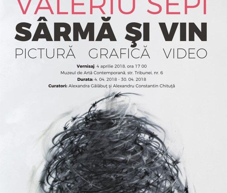 """Expoziție personală Valeriu Sepi, """"Sârmă și Vin"""" @ Muzeul de Artă Contemporană – Muzeul Național Brukenthal"""