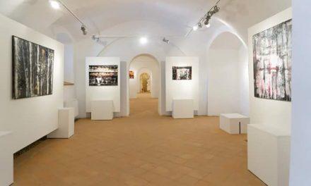 """ExpozițiaInterior la Galeria de Artă din Cetatea Oradea, Corp """"C"""""""