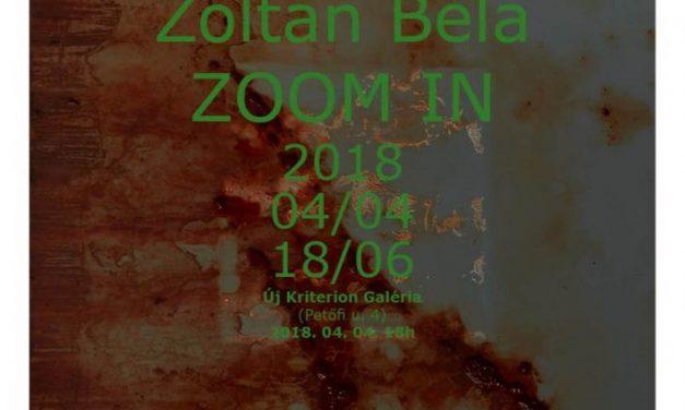"Zoltán Béla,""ZOOM IN""@ Galeria Új Kriterion, Miercurea Ciuc"