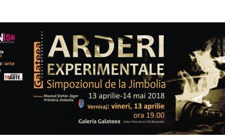 """Expoziția""""ARDERI EXPERIMENTALE – Simpozionul de la Jimbolia"""" @ GalateeaContemporary Art, București"""