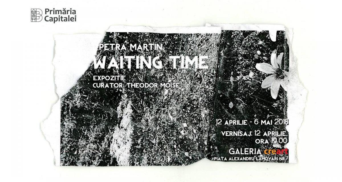 """Expoziție Petra Martin """"Waiting Time"""" @ Galeria creart, București"""