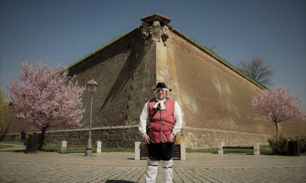 Roz de Alba Iulia