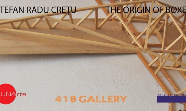 "Ștefan Radu Crețu ""The Origin of Boxes"" @ UNAgaleria, București"
