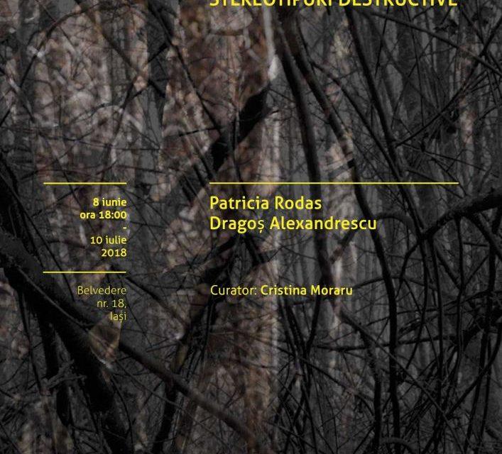 """Expoziție """"Revolta freamătului: anticipare, contemplare, stereotipuri destructive"""" Patricia Rodas și Dragoș Alexandrescu @ Borderline Art Space, Iași"""