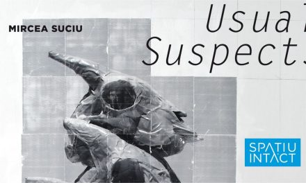 "Mircea Suciu ""Usual Suspects"" @ Spațiu Intact, Cluj-Napoca"
