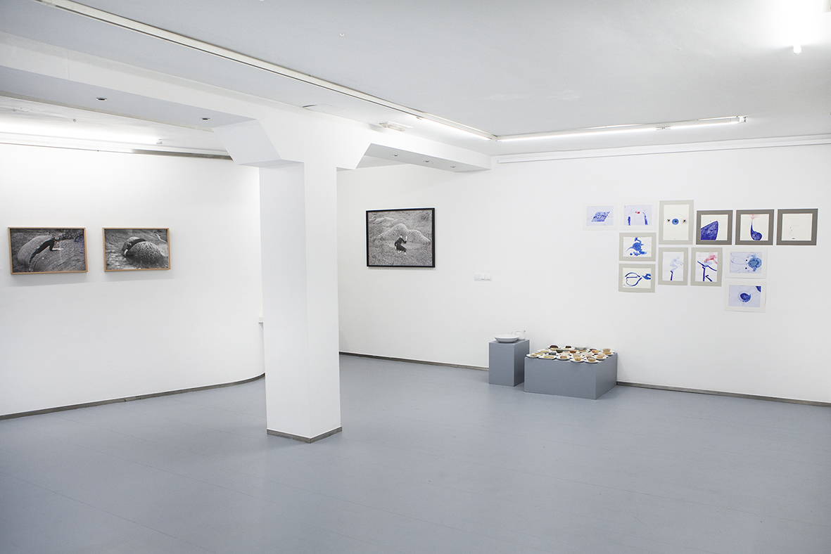 Exhibition view. Photo credit: Javier Lamela
