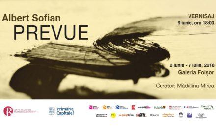 """Albert Sofian expoziție de grafică """"Prevue"""" @ Centrul Cultural """"Palatele Brâncovenești de la Porțile Bucureștiului"""""""