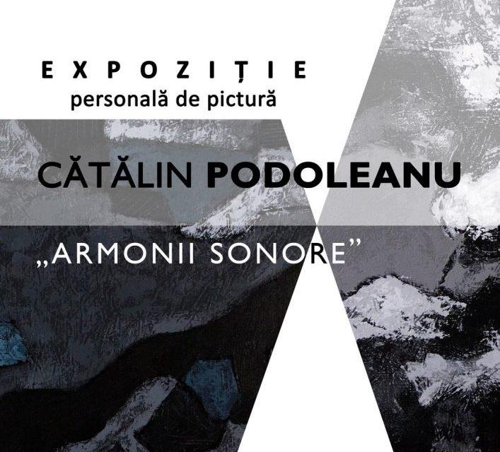"""Cătălin Podoleanu """"Armonii sonore"""" @ Galeriile Municipale de Artă din Târgu Jiu"""