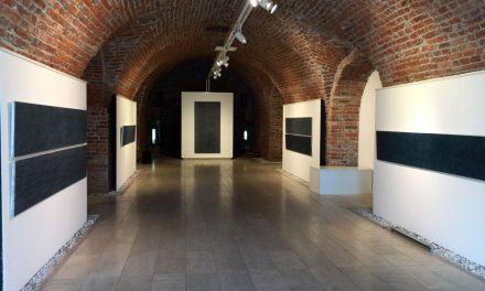 """Dana Constantin """"FLOTEs"""" @ Galeria Calpe, Timișoara"""