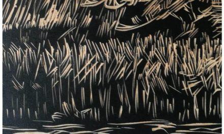 """Florin Stoiciu """"Gestul în xilogravură"""" @ Muzeul Național al Literaturii Române"""