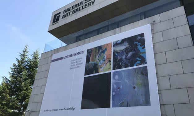 Post utopia @ BWA SOKOL Gallery of Contemporary Art  Nowy Sacz, Polonia