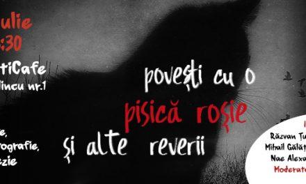 """Eveniment special de poezie şi artă fotografică """"Poveşti cu o pisică roşie şi alte reverii"""" @ Librăria Seneca Anticafe, București"""