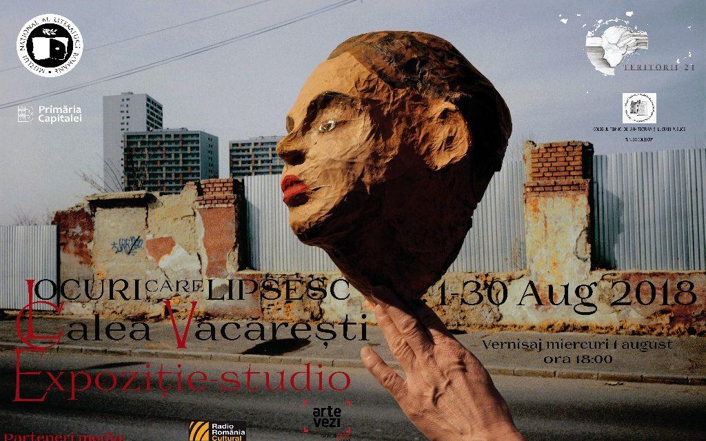 """Expoziția-studio""""Locuri care lipsesc. Văcărești – Dudești"""" @ Muzeul Național al Literaturii Române"""