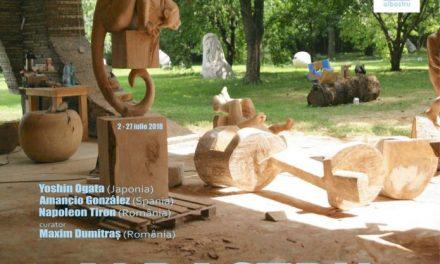"""Rezidență internațională de sculptură """"Albastru"""" @ Centrul de Cultură """"George Apostu"""""""