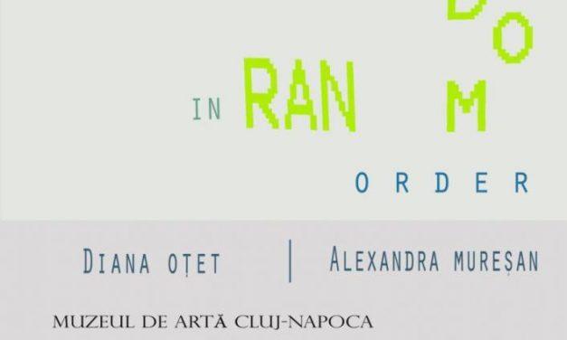 """Expoziţia """"Transparent Thoughts in Random Order"""" a artistelor Diana Oţet şi Alexandra Mureşan @ Muzeul de Arta Cluj-Napoca"""