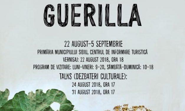 """Expoziție Brukenthal von Studio """"Rural Guerilla"""" @ Centrul de Informare Turistică dincadrul Primăriei Municipiului Sibiu"""