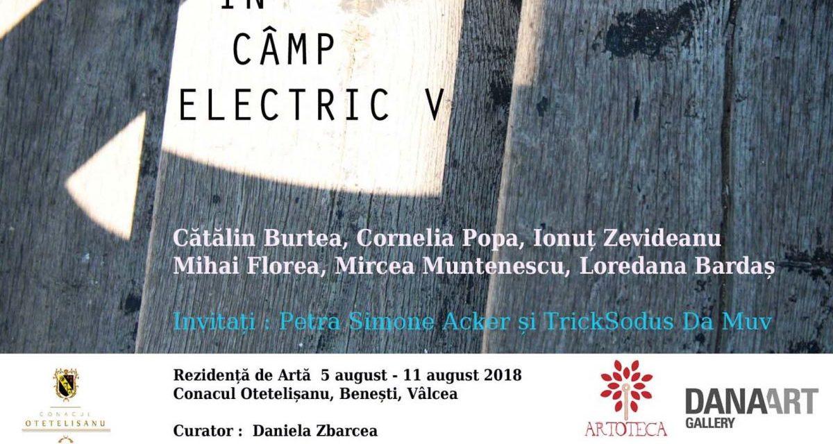"""Rezidența de artă """"În câmp electric"""" V @ Conacul Otetelișanu"""