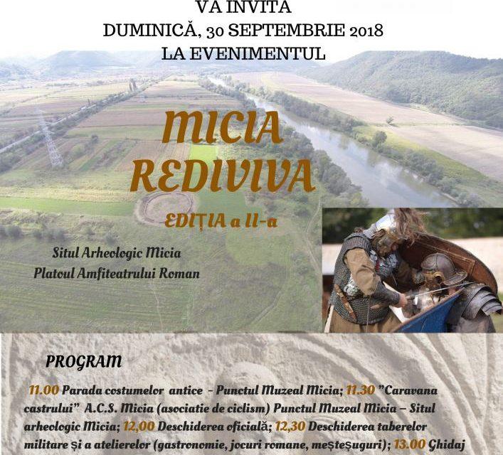 "Festivalul ""Micia Rediviva"", ediția a II-a"