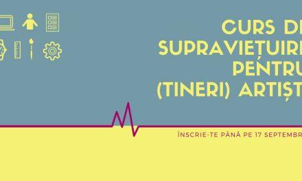 Curs de supraviețuire pentru (tineri) artiști @ Fabrica de Pensule, Cluj-Napoca