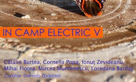 """Expoziția """"În câmp electric"""" V la Metropolis Art Collection, București"""