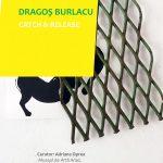 """Expoziția """"Catch and Release"""" – DRAGOȘ BURLACU @ Arad"""